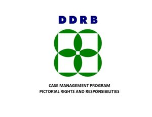 thumbnail of DDRB Pictoral Rights2018